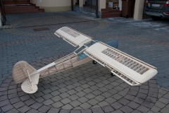 storch-19-of-24